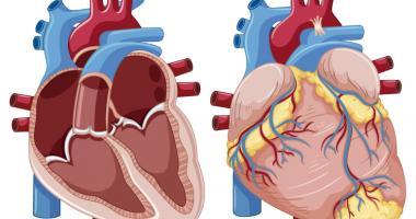 La presion baja produce taquicardia