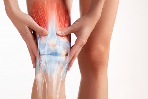 como curar un tendon inflamado de la rodilla